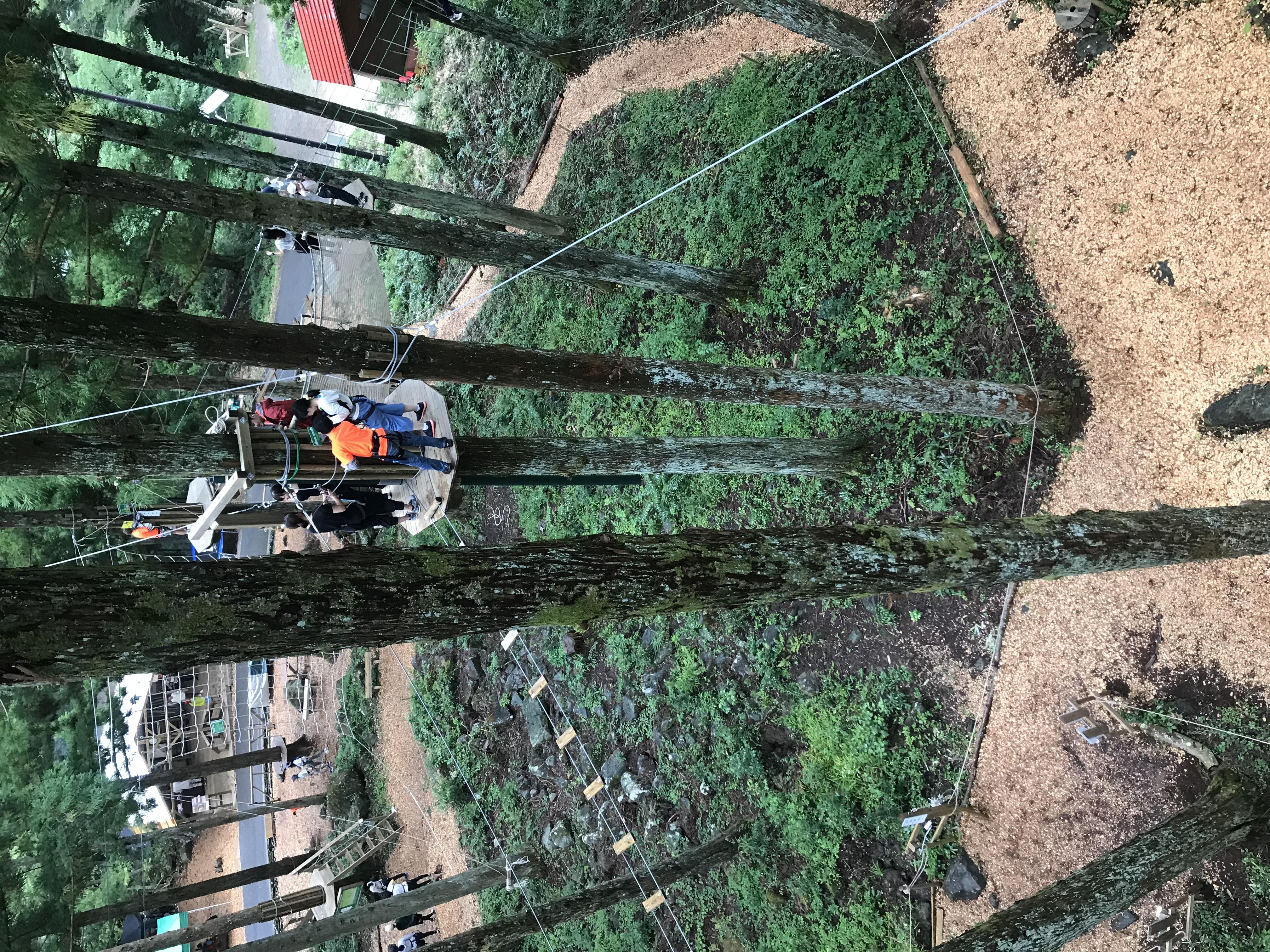 もみの木森林公園【フォレストアドベンチャー】へ!