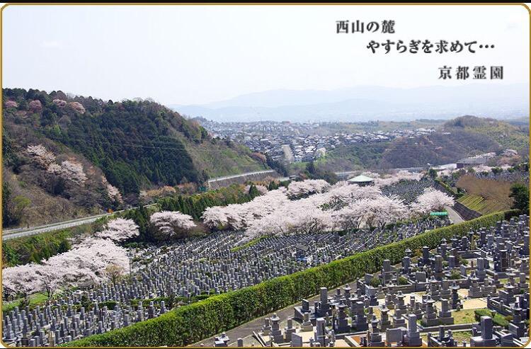 お彼岸は京都へ行ってきました(^^)